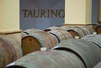 Taurino Cosimo
